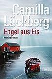 Engel aus Eis (Ein Falck-Hedström-Krimi, Band 5)