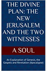 THE DIVINE PLAN: THE NEW JERUSALEM AND THE TWO WITNESSES: An Explanation of Genesis, the Gospels and Revelation (Apocalypse) (Mary Refuge Of Holy Love Book 1) Kindle Edition