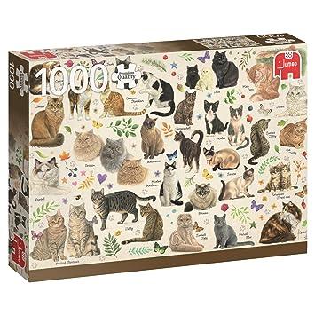 Jumbo Poster de Gatos Puzzle de 1000 Piezas 18595.0: Amazon.es: Juguetes y juegos