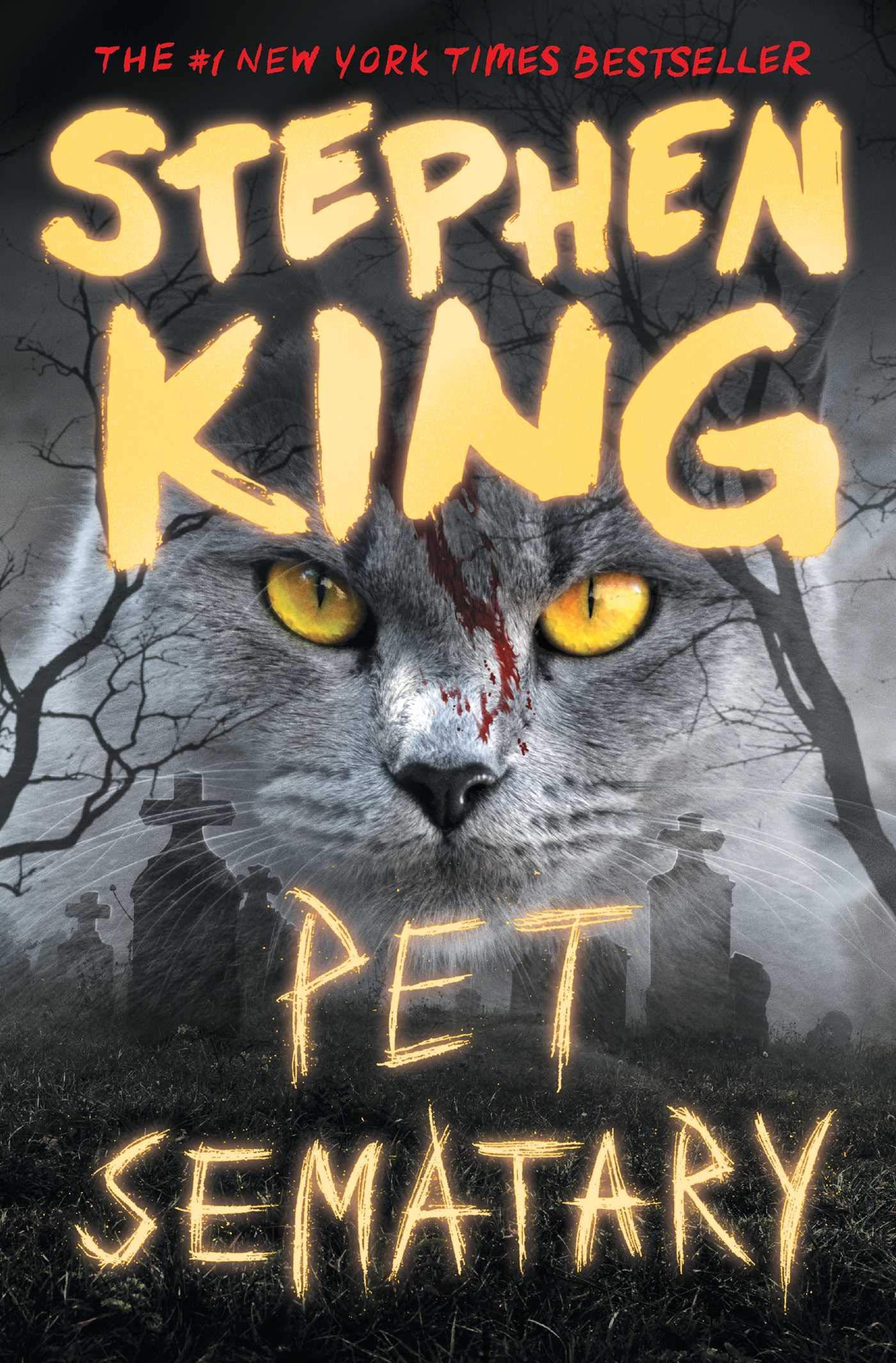 Pet Sematary: King, Stephen: 9781982112394: Amazon.com: Books