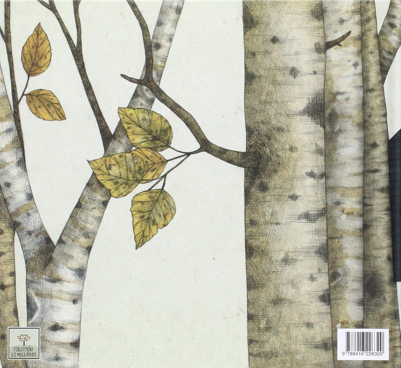 El momento perfecto (Lo Mullarero) (Spanish Edition): Susanna Isern Iñigo, Marco Somà: 9788416226320: Amazon.com: Books