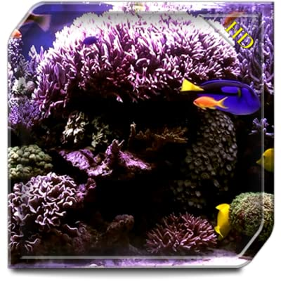 Aquarium Radiance HD - Wallpaper & Themes