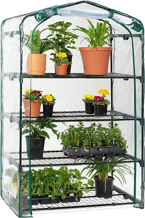 Garden Green House wih Roll-Up Zipper Door for Garden Yard Patio Indoor Outdoor Plants Portable Plant Flower Shelf with Durable PVC Cover QCUTEP 2-Tier Mini Greenhouse
