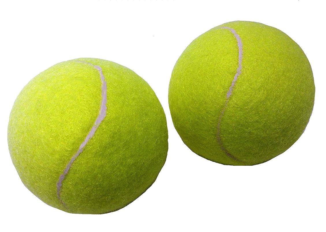 ドアカバーデータサクライ貿易(SAKURAI) CALFLEX(カルフレックス) テニス 硬式 ボール 48球入り イエローxオレンジ LB-4048 YLxOG