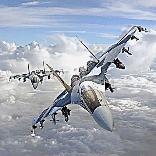 Jet Flight Simulation