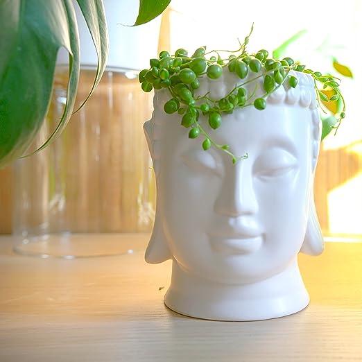 Maceta de cerámica esmaltada con cabeza de Buda para jardín, interior, exterior, flor, Zen, 16 cm de altura, color blanco: Amazon.es: Jardín