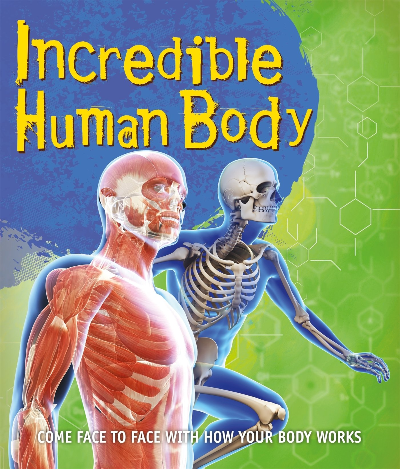 Fast Facts Incredible Human Body Amazon Kingfisher Books Books