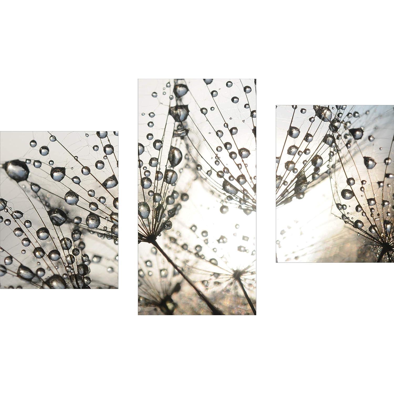 decorwelt | Dreiteiliges Wandbild 3 Teilig Acrylglasbilder Acryl Glasbild Pusteblume Grau 90x60 cm Wandbilder Wohnzimmer Esszimmer Deko Wanddeko