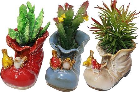 Amazon.com: Maceta decorativa de cerámica con diseño de ...
