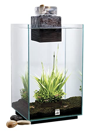 aquarium shui ii