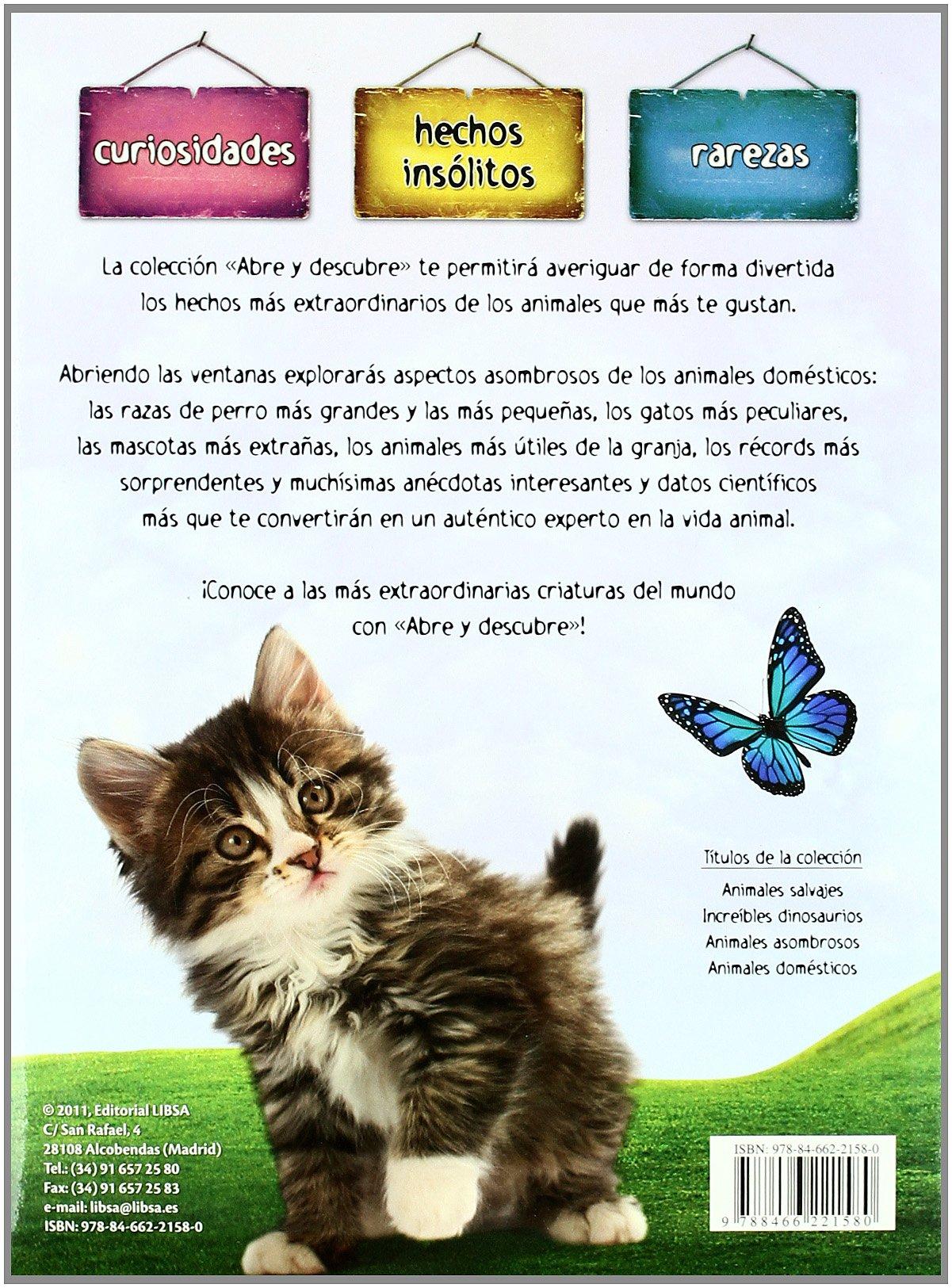 Animales domesticos / Pets (Spanish Edition): María Mañeru: 9788466221580: Amazon.com: Books