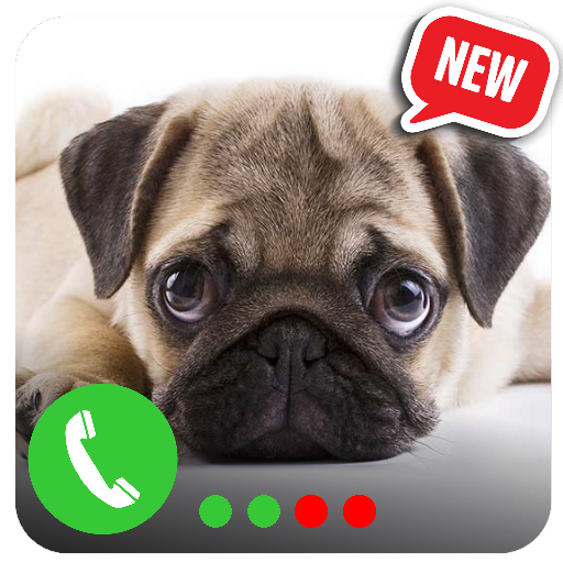 Prank Call - Fake Call of Puppies Pug