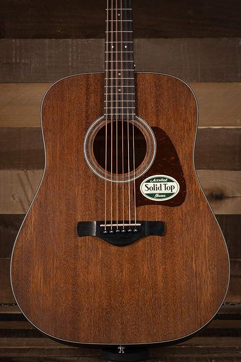 Ibanez AVN6 Acoustic Guitar