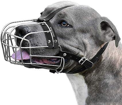 BronzeDog Bozal de Perro Pitbull Máscara de Metal Amstaff Cesta de ...