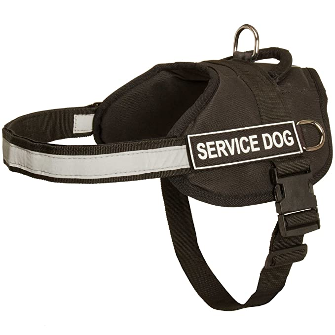 Nylon arnés del perro con correa reflectante para entrenamiento ...
