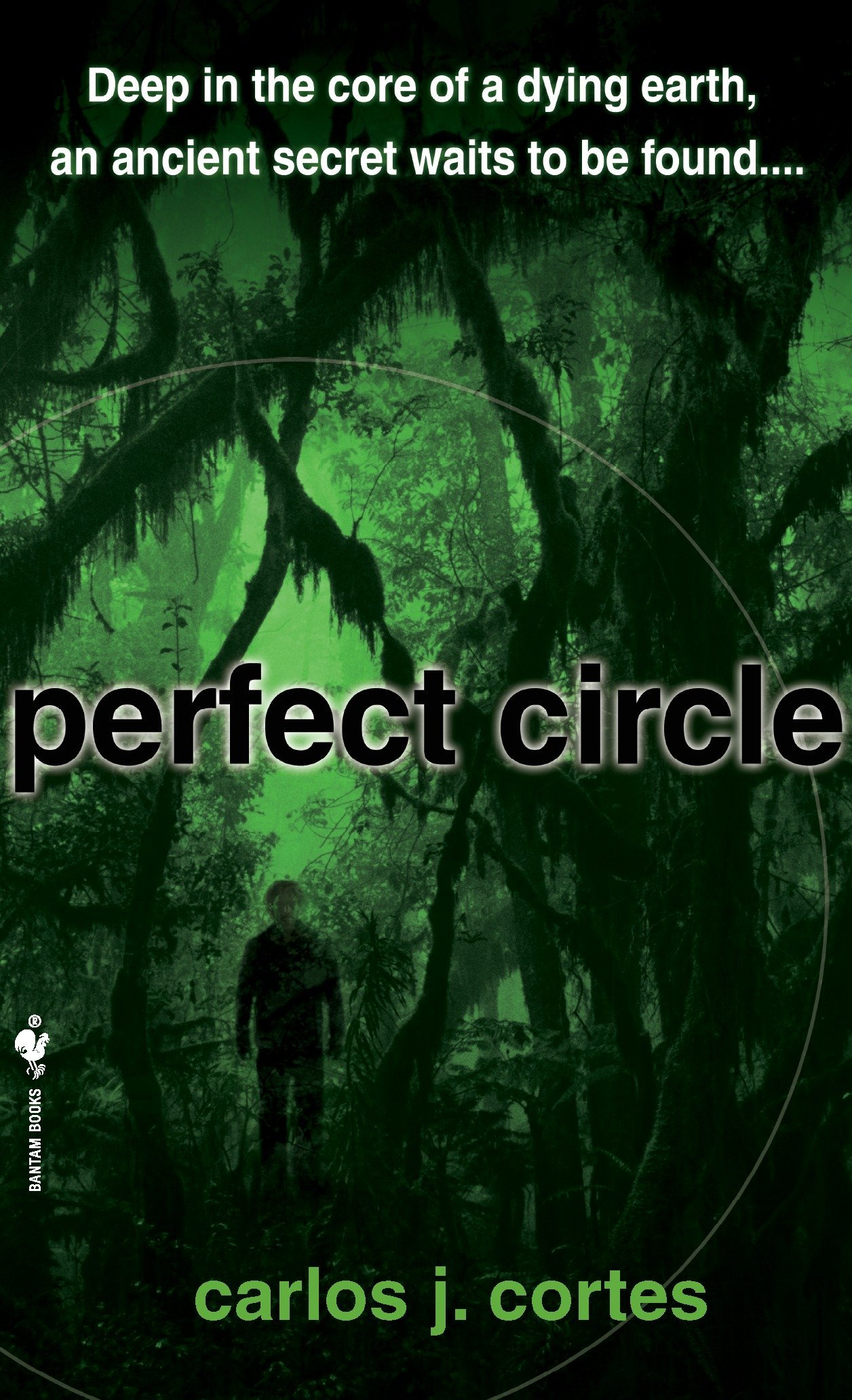 Amazon.com: Perfect Circle: A Novel (9780553591620): Carlos ...