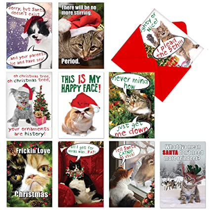 a1254 petigreet cat mass cards assorted box of 10 hilarious christmas cards w