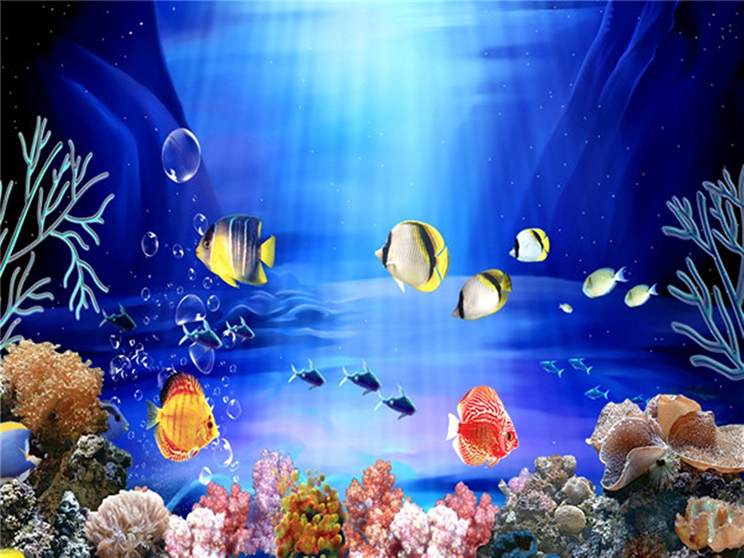 Buy Shalimar Pets Aquarium Background Design No 3 Lenght 24 Inch Height 15 Inch Online At Low Prices In India Amazon In
