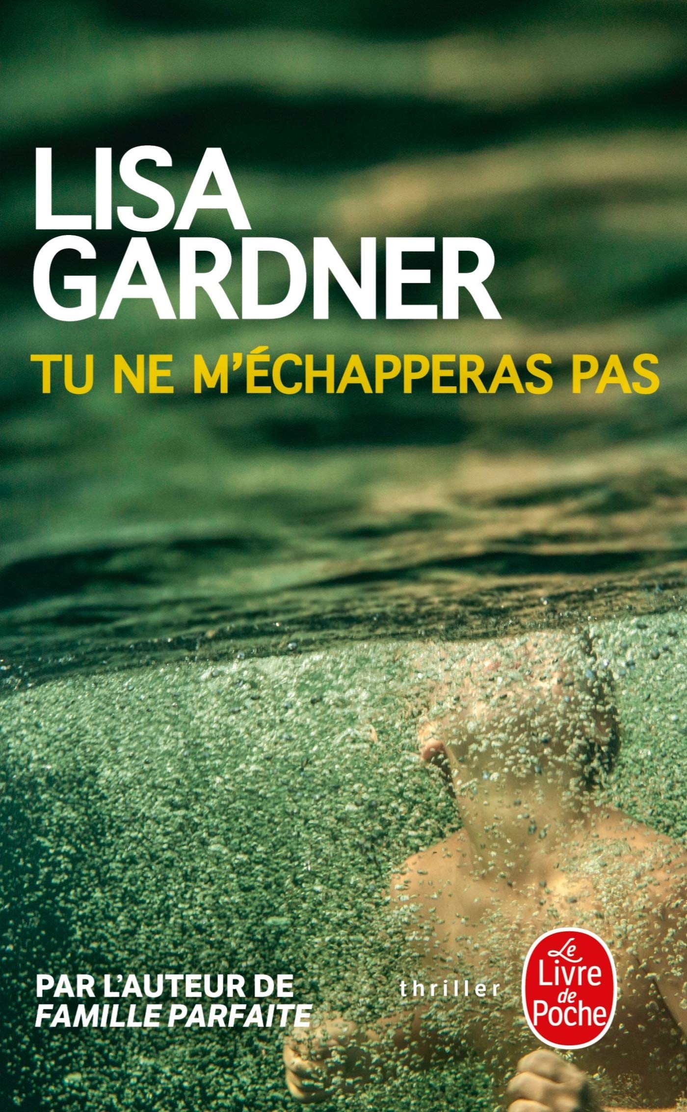 Tu Ne M Echapperas Pas Lisa Gardner 9782253004592 Amazon