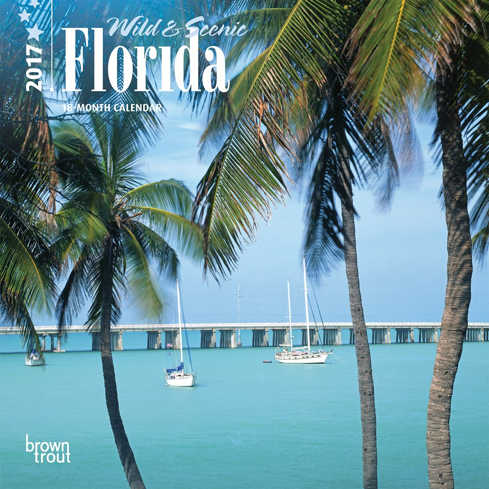 Florida, Wild & Scenic - 2017 Mini Calendar 7 x 7in pdf