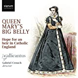 Queen Mary's Big Belly: Hope for an heir in Catholic England
