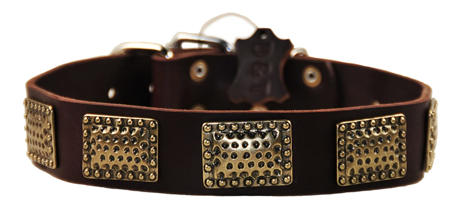 Dean and Tyler DRUM ROLL , Leather Dog Collar with Hammered Brass Plated Plates Brown Size 26-Inch by 1-1 2-Inch Fits Neck 24-Inch to 28-Inch