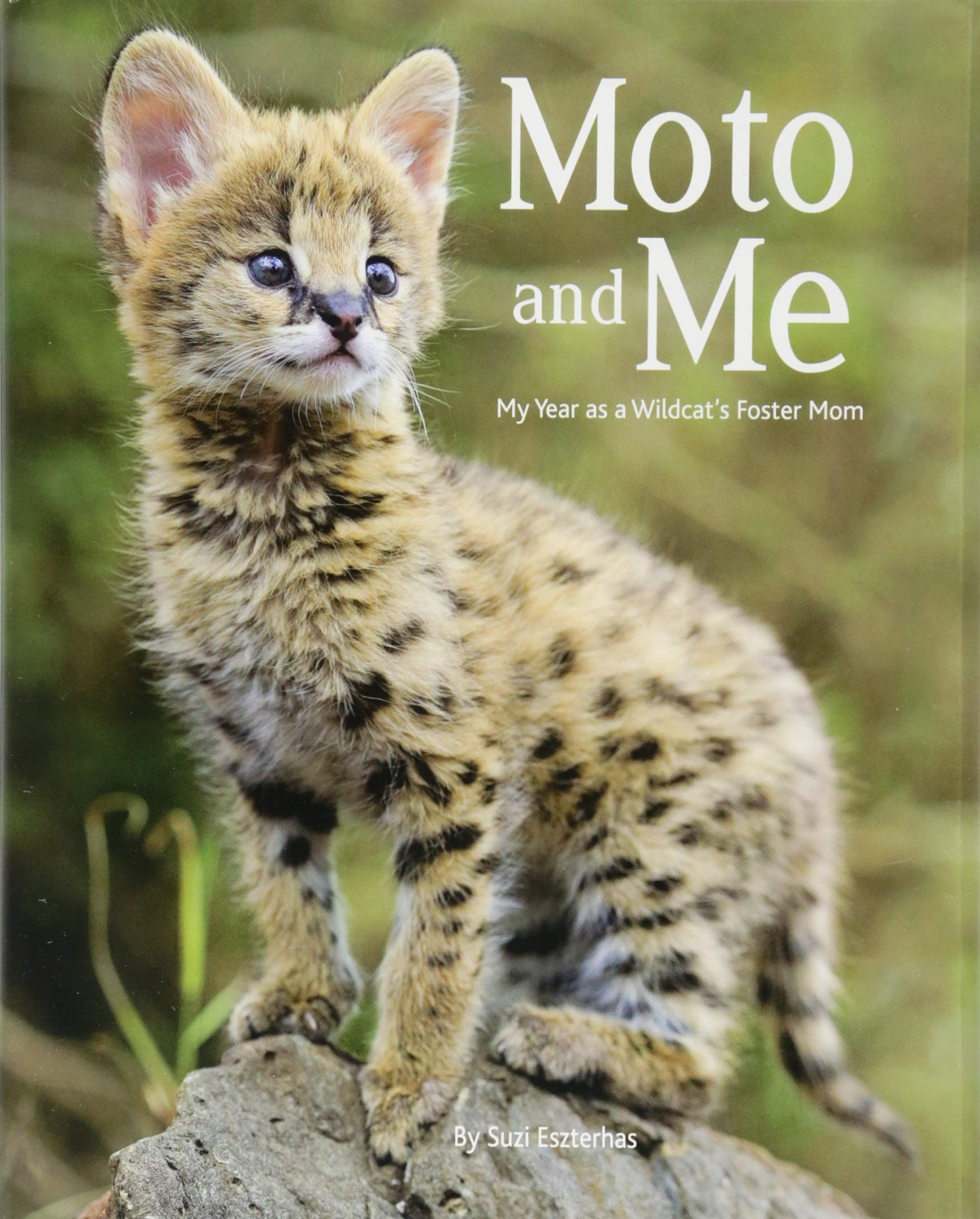 Moto and Me book cover