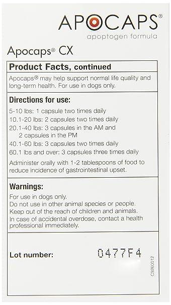 Amazon Com Apocaps Cx Apoptogen Formula For Dogs 90 Capsules Pet Herbal Supplements Pet Supplies