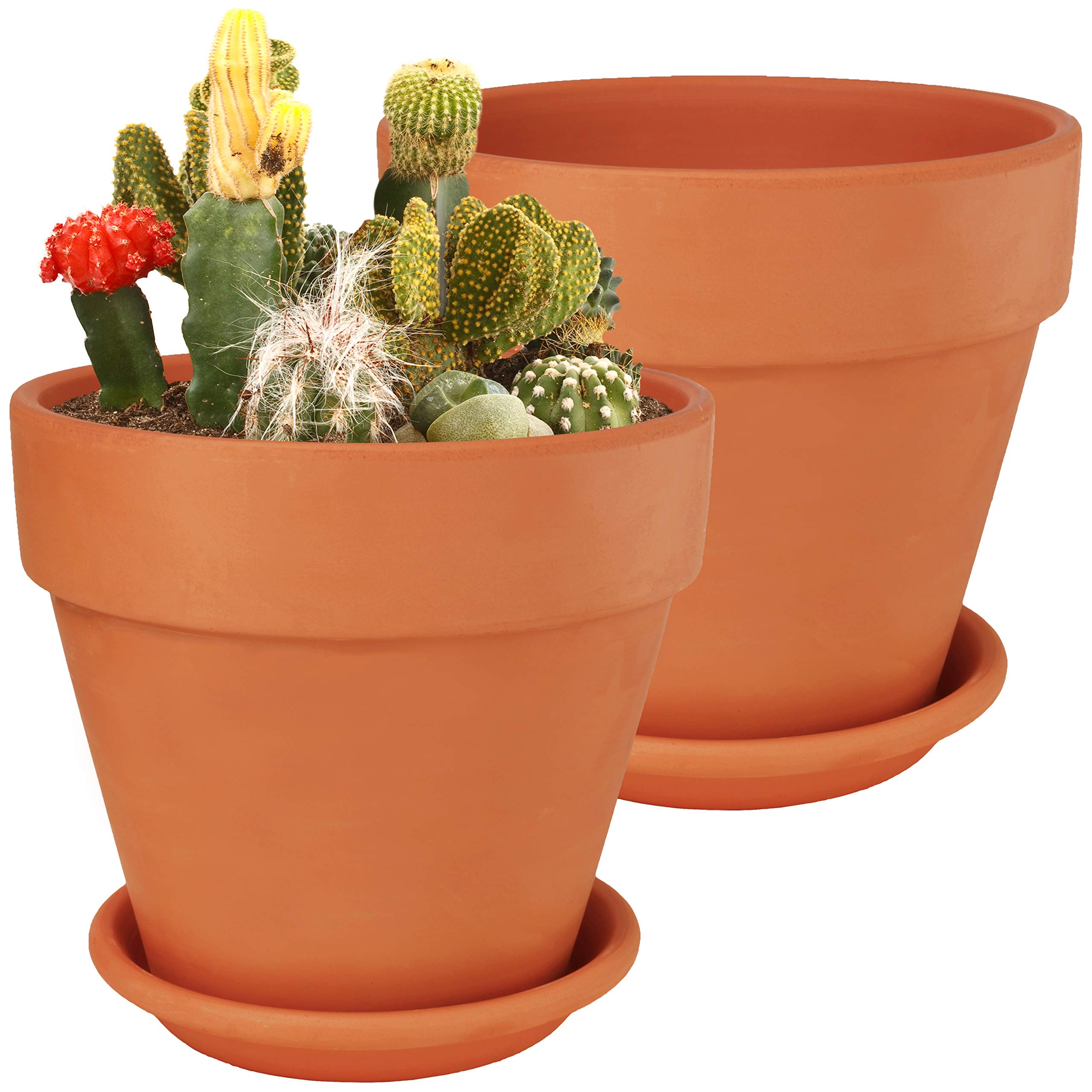 8 Inch Large Terra Cotta Pots with Saucer- 2-Pack Clay Flower Pots with Saucers, Flower Pot Planters for Indoor, Outdoor Plant, Succulent Display (8 inches) by BESTTOYHOME
