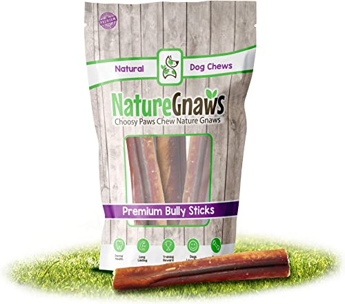 Nature Gnaws Jumbo Bully Sticks 6 Inch – 100 Natural Free-Range Beef Bullys – Extra Thick Long Lasting Chew Bones for Large Dogs Aggressive Chewers