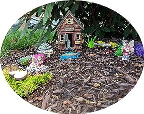 Limited Edition Schoolhouse Kids Fairy Garden Starter Kit | 12 Pieces