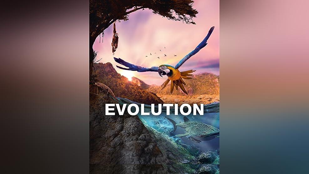 Evolution - Die Entstehung der Welt