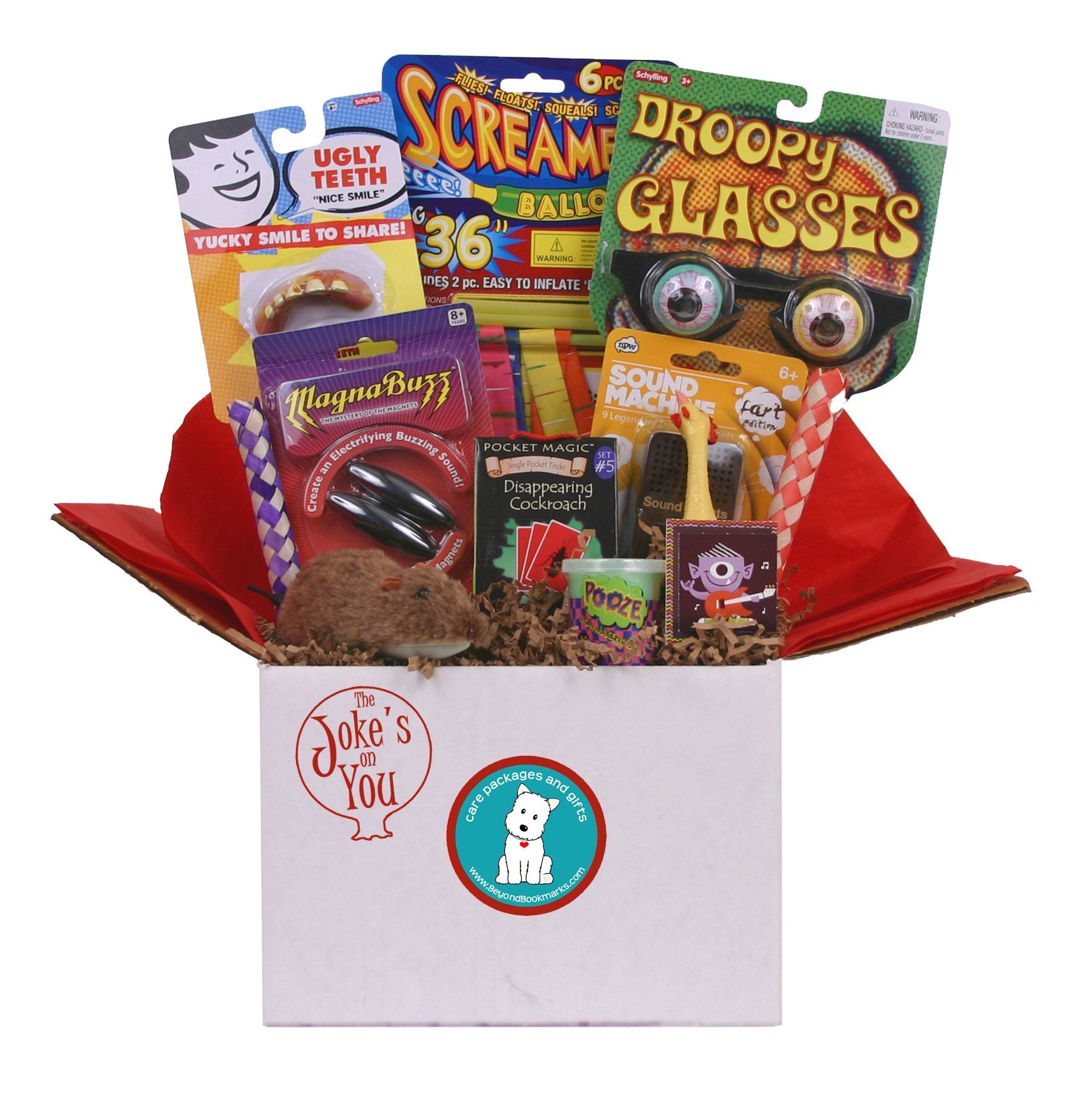 Beyond Bookmarks The Joke's On You - Summer Camp Care Package or Birthday Gift With Fun Gags and Jokes