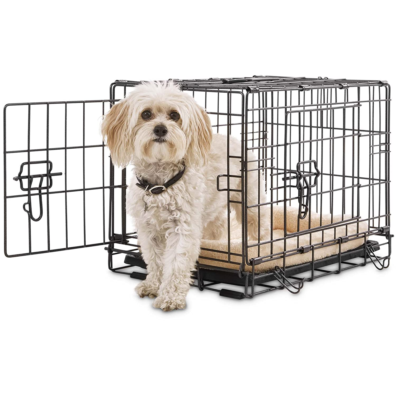 Amazon.com : Petco Premium 2-Door Dog Crate, 42\