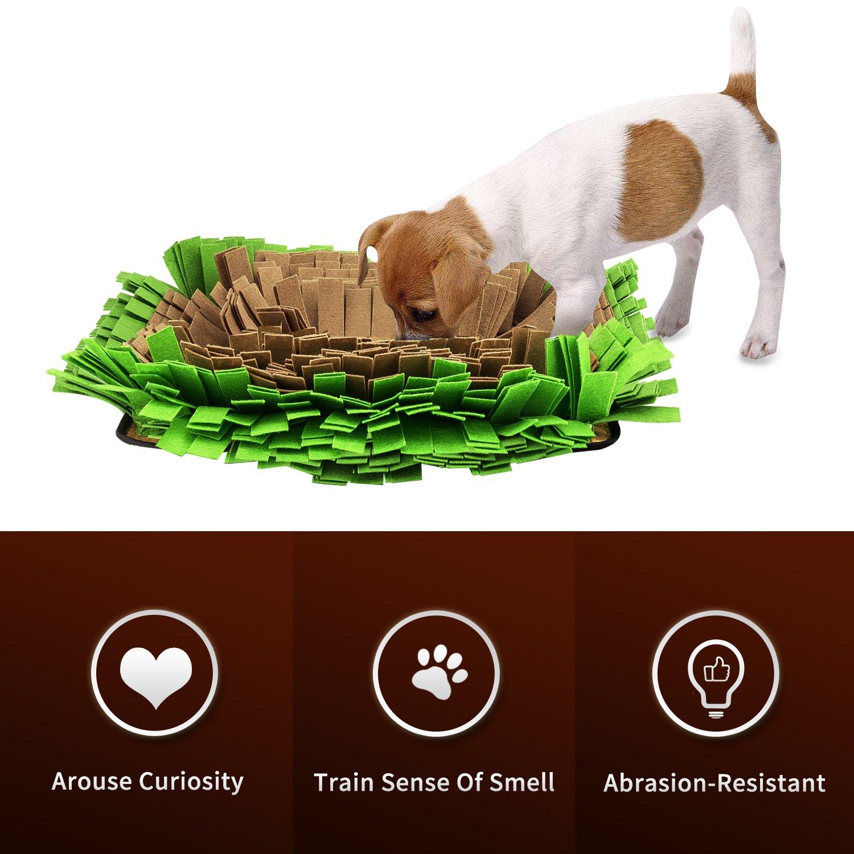 17.3 x 12.6 Premium Alfombrilla de Entrenamiento Manta Suave de Trabajo y Actividad para Peque/ño Pawaboo Snuffle Mat para Perro Grande Perros Marr/ón y Verde Medio