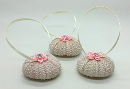 Amazon Com Pink Sea Urchin Christmas Ornaments 3 Pack Pink Sea