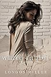 White Rabbit: The Fall (The Kingmaker Saga Book 2)