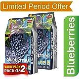 Bertins Truefood Dried Blueberries 400gm