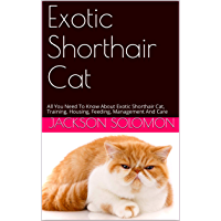 Exotic Shorthair Cat: All You Need To Know About Exotic Shorthair Cat, Training, Housing, Feeding, Management And Care