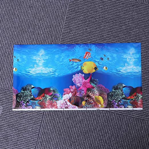 POPETPOP Fish Tank Background Sticker 3D de Doble Cara Adhesivo del Acuario Wallpaper Imágenes Decorativas 52x30cm: Amazon.es: Productos para mascotas