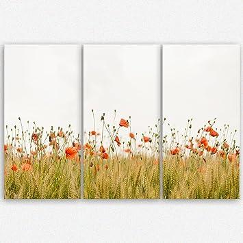 Leinwandbild mit oder ohne Keilrahmen Mohnfelder