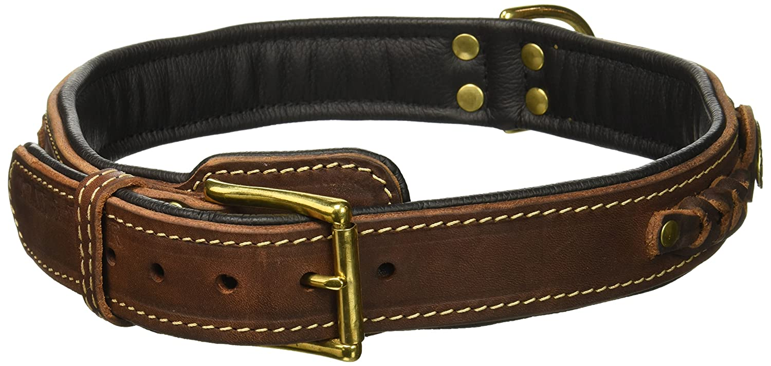Dean & Tyler Dean's Legend Leather Dog Collar with Black Padding and Solid Brass Hardware, 30 by 1-1 2-Inch, Brown