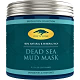 (9.2 oz) Dead Sea Mud Mask for Face and Body - 100% Natural Spa Quality - Perfect Pore Minimizer, Deep Skin Cleanser, Reduces Acne, Blackheads and Oiliness for a Tighter Skin and Healthier Complexion