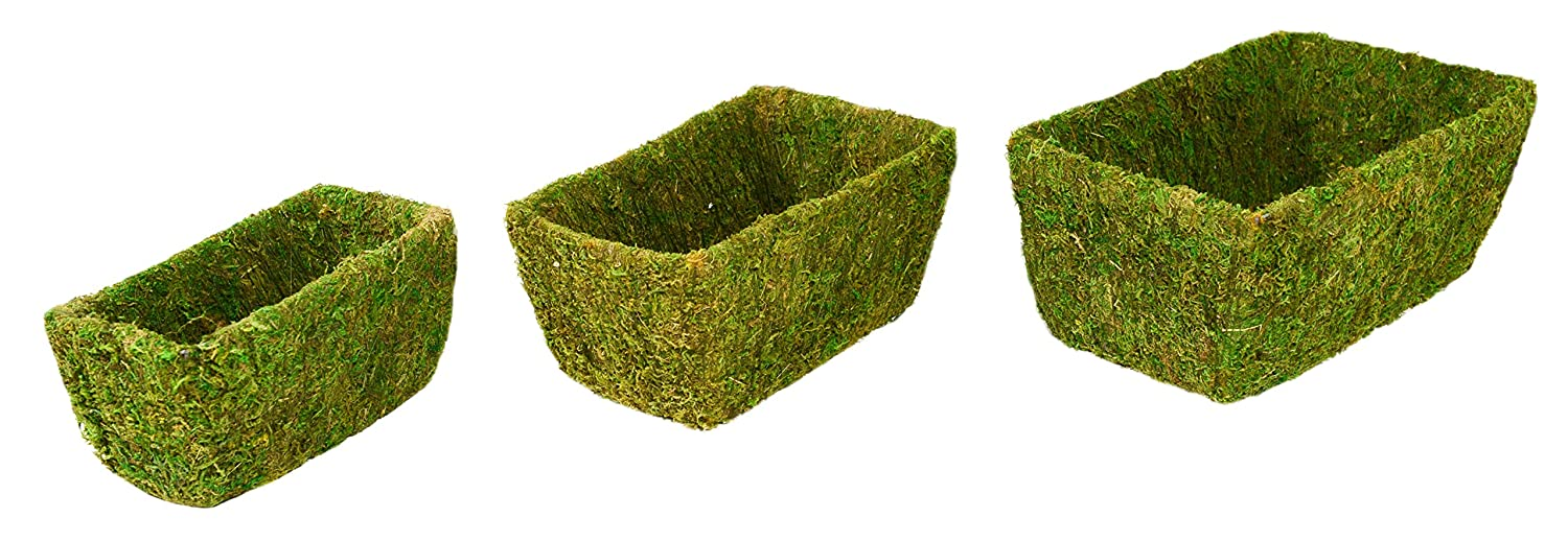 S//M//L Super Moss Shasta Fresh Green Set of 3 55020