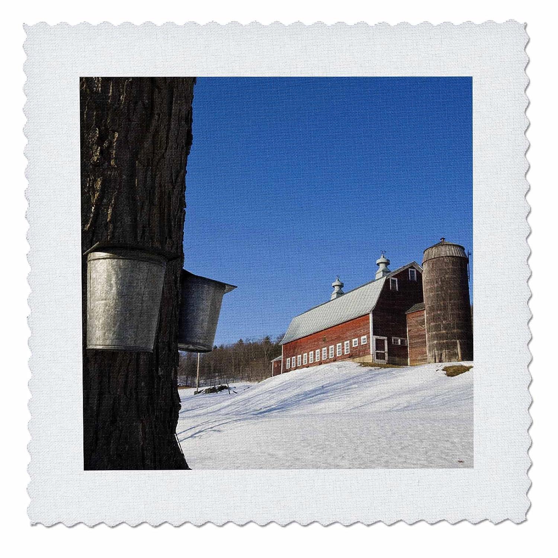 3dRose Sap バケツ、カエデの木、ポンフレット、バーモント州 - US46 JMO0207 - ジェリーとマーシー モンクマン - キルト 正方形、10 x 10インチ (qs_95008_1) B00AGO8H6O