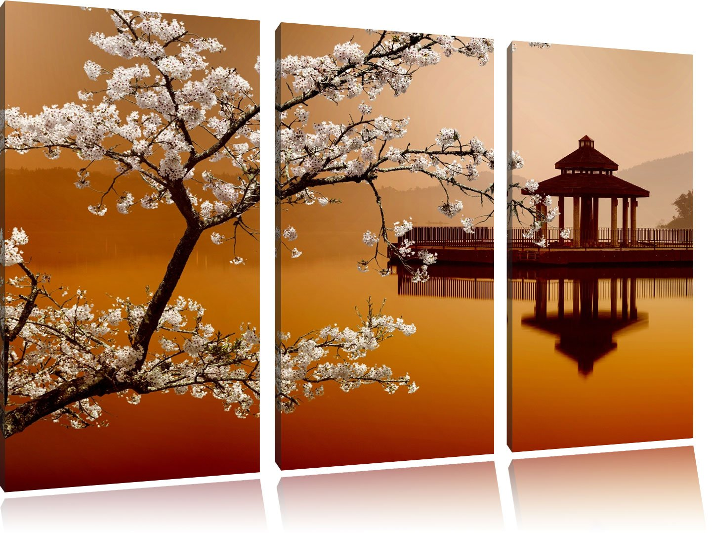 bellissimo albero ciliegio sul mare giapponese bianco / nero su ...