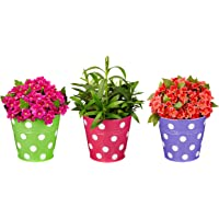 Amazon Brand - Solimo Corrosion Resistant Hanging Planter