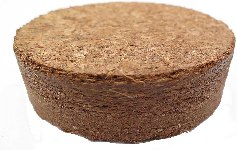 A2 10 St/ück Kokoskn/öpfe Umweltfreundlich 25mm Kokosnussschalen 2 L/öcher N/ähen Kn/öpfe