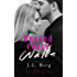 Beyond These Walls (The Walls Series Book 2)