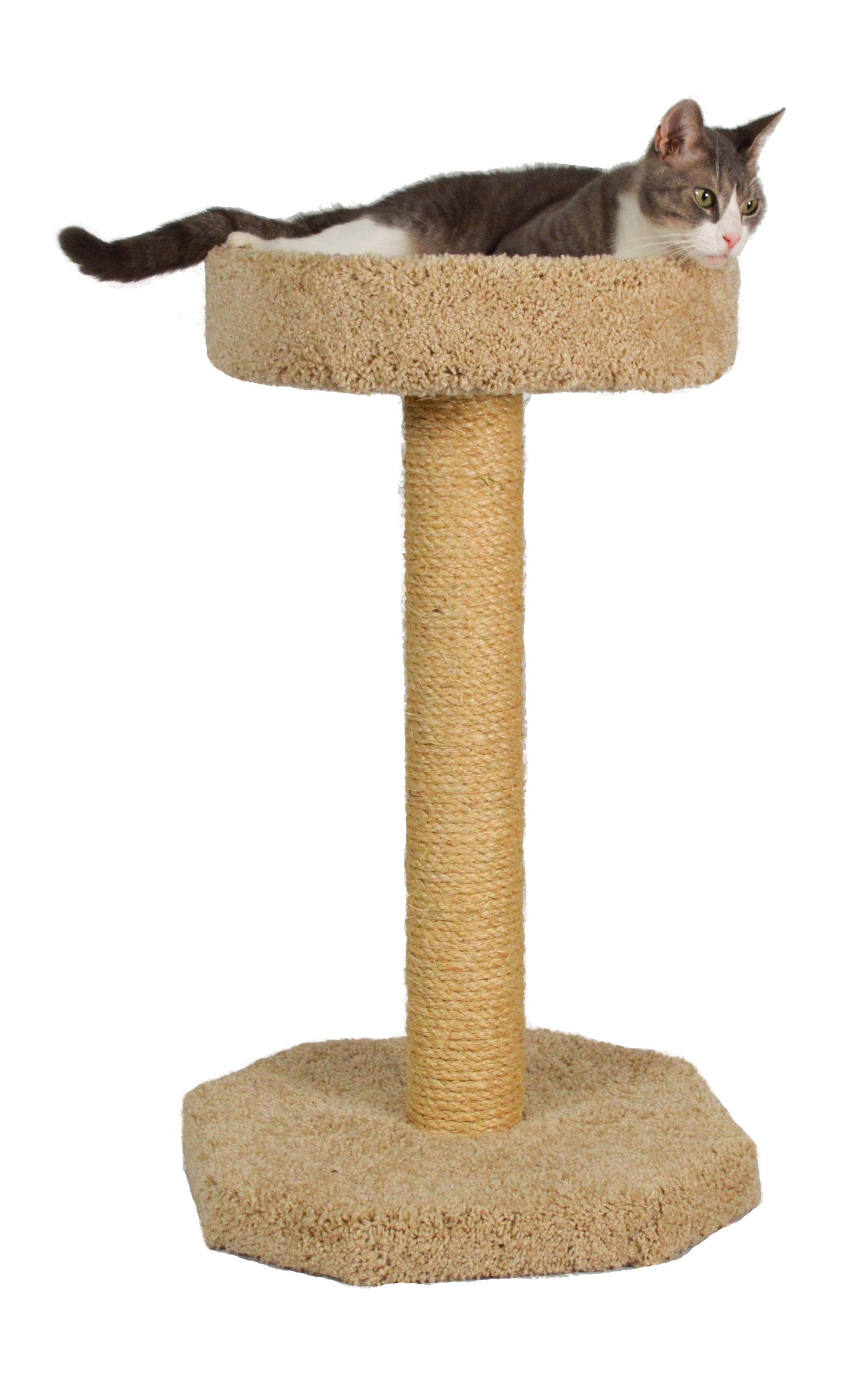 Molly and Friends ''Feline Recliner Premium Handmade One Tier Sisal Cat Scratching Post Furniture with Bed, Model Scr/b, Beige by Molly and Friends